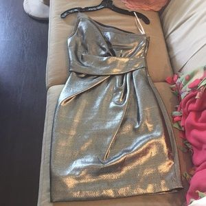 Metallic Silver Halston Heritage Cocktail Dress